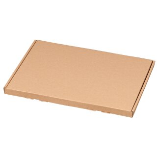 Großbriefkarton, A4, 350x250x20mm, VE25